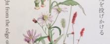 耳納山麓の草花たち